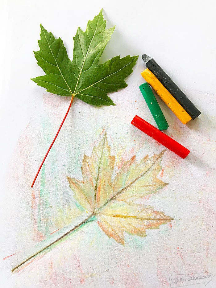 This is a photo of Lucrative Grabbing Leaf Drawing