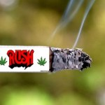 rush pot