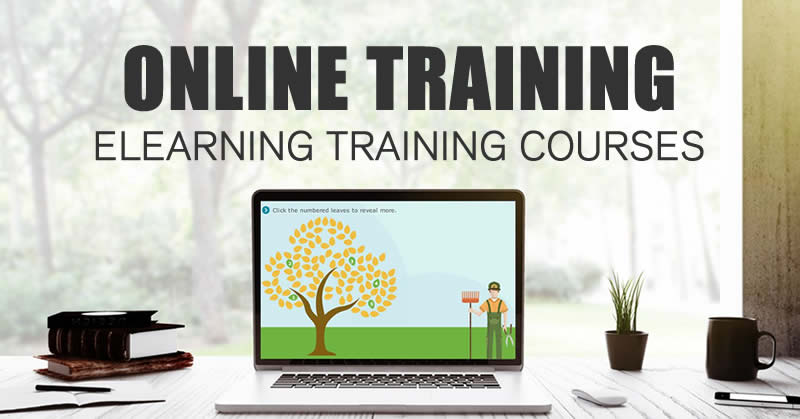 eLearning courses  Online Training  100 Effective