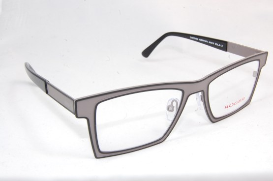 ROGER-OPTIQUE10/10-FACHES THUMESNIL