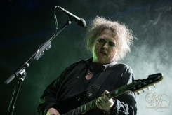 the cure rlh images (15 of 36)
