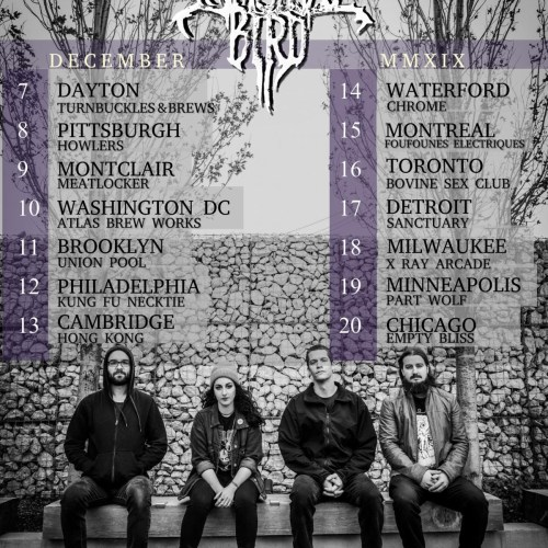 IMMORTAL BIRD Kicks Off North American Headlining Tour This Weekend