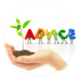 Module 12: Business Advice