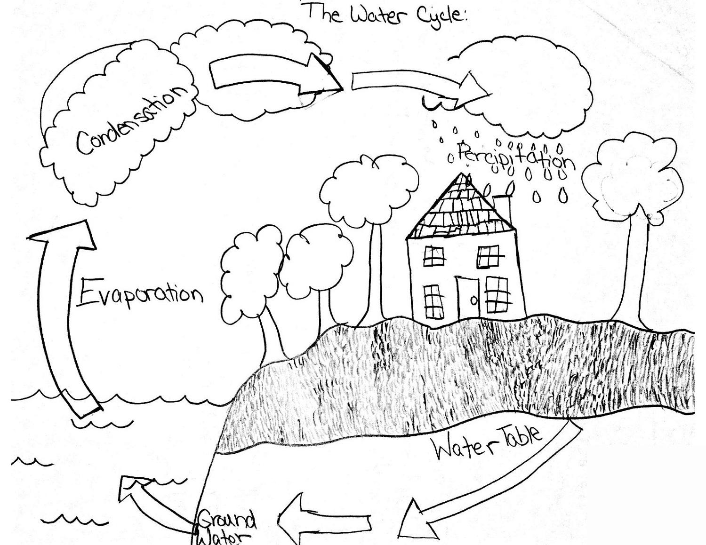 The Water Cycle Diagram Easier For Kids Printable