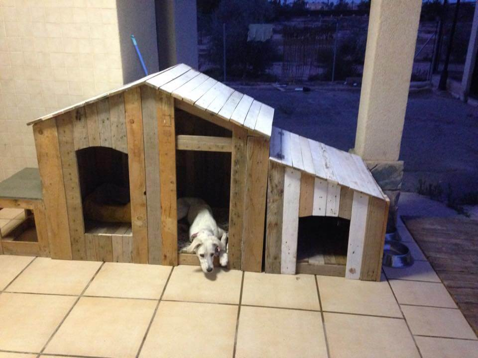 great office chairs pop up how to build a pallet dog house? - diy