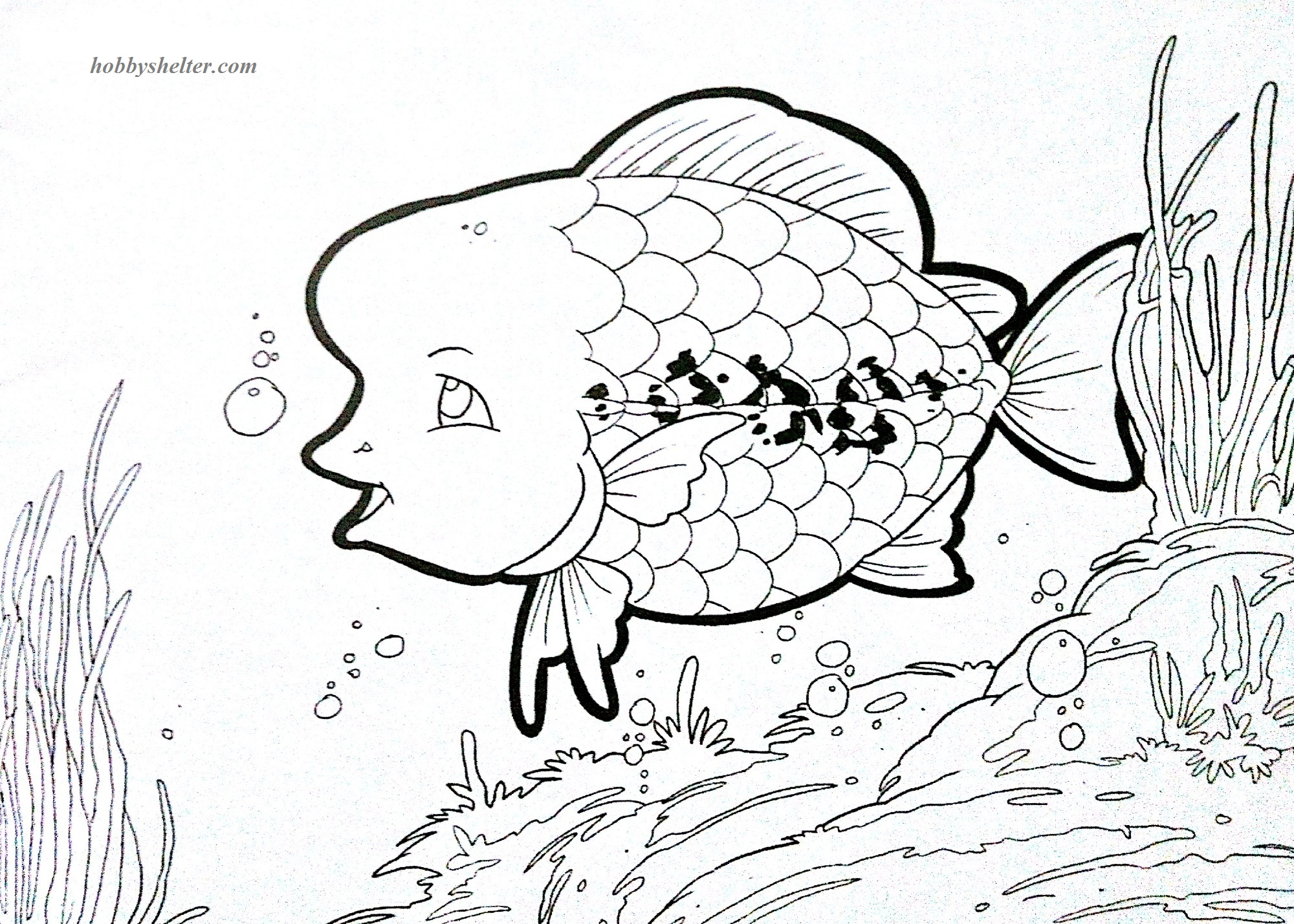 Goldfish And Louhan Coloring Pages