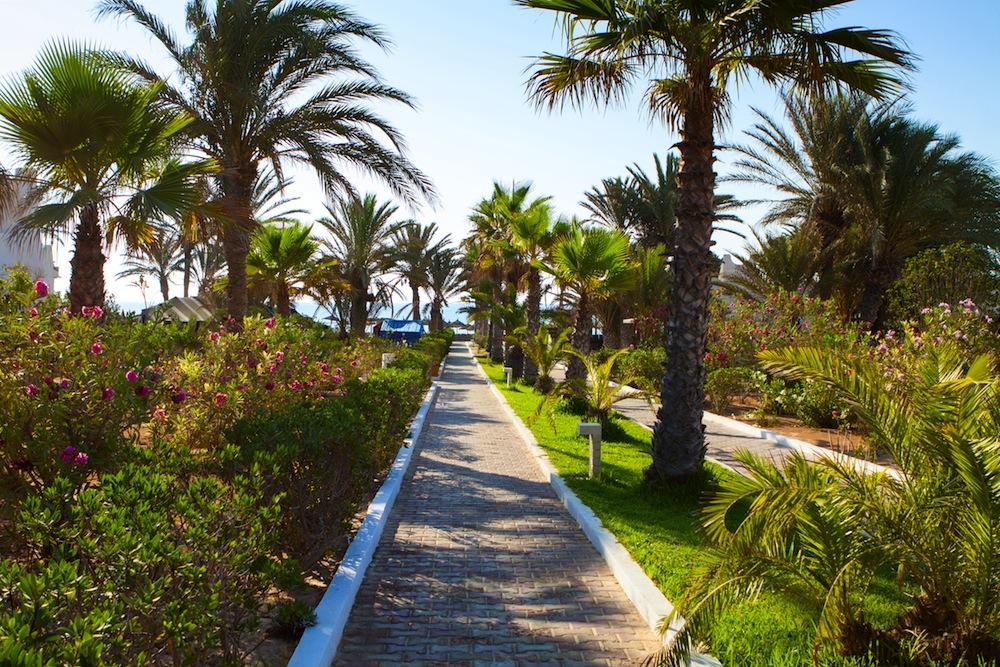 Turismo en la Isla de Djerba en Tnez  101viajes