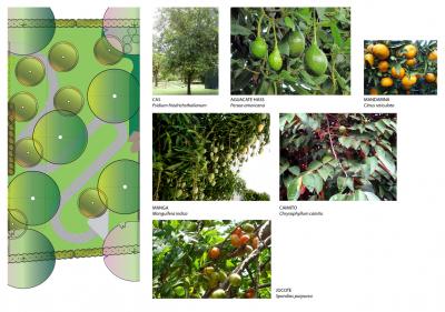 Architect-Design-Landscape-SV-6