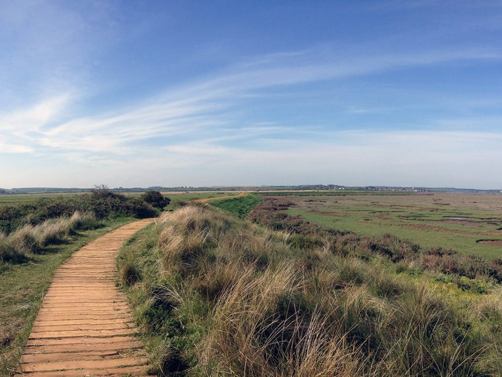 Boardwalk across the marsh, Norfolk Coast Path National Trail. Copyright Stephanie Boon, 2018. All Rights Reserved.