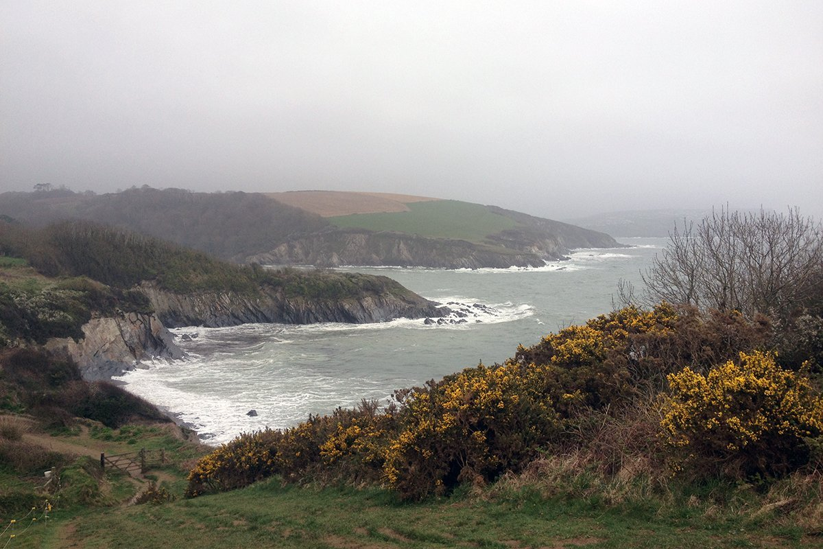 Looking towards Polridmouth Cove, South West Coast Path, Cornwall UK. Copyright Stephanie Boon, 2018. All rights Reserved.