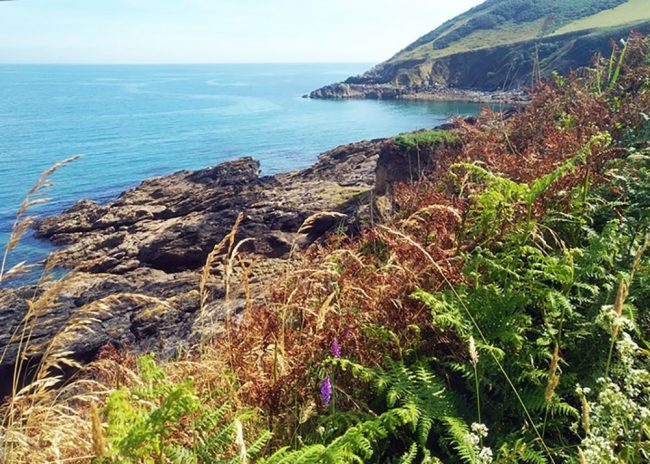 View from the South West Coast Path, near Veryan, Cornwall