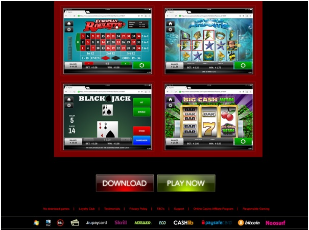 Download or Instant play mobile casinos