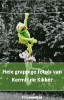 Hele grappige foto's van Kermit de Kikker 🤣