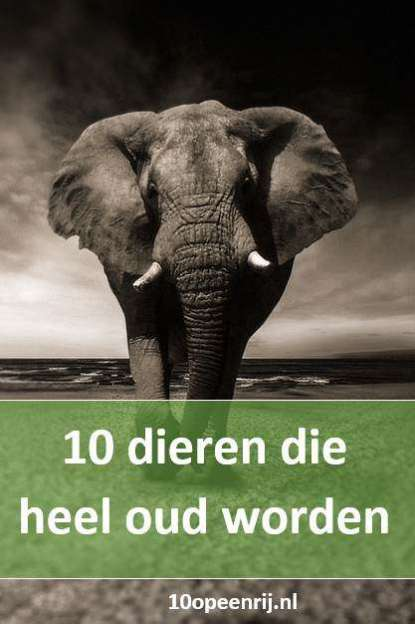 10 dieren die heel oud worden