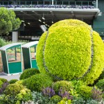 Wimbledon One Week Away From Cancellation