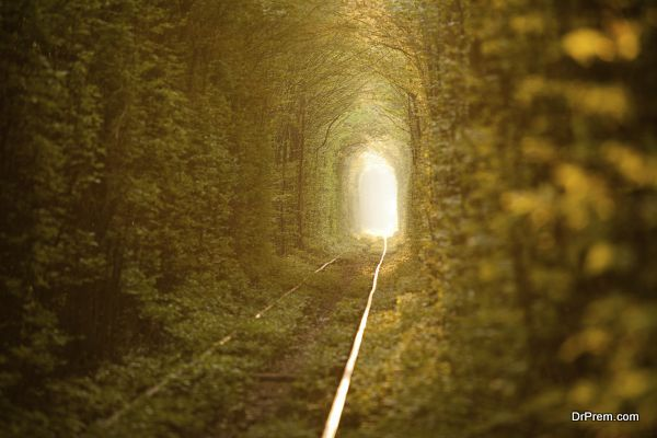 Green tunnel.