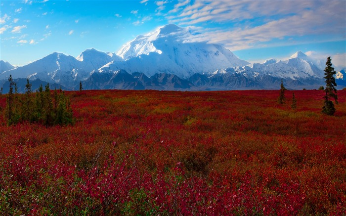 New England Fall Desktop Wallpaper Denali National Park Beautiful Landscape Hd Wallpaper