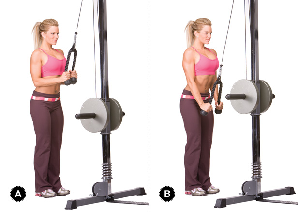 Lateral Pulldown Exercises