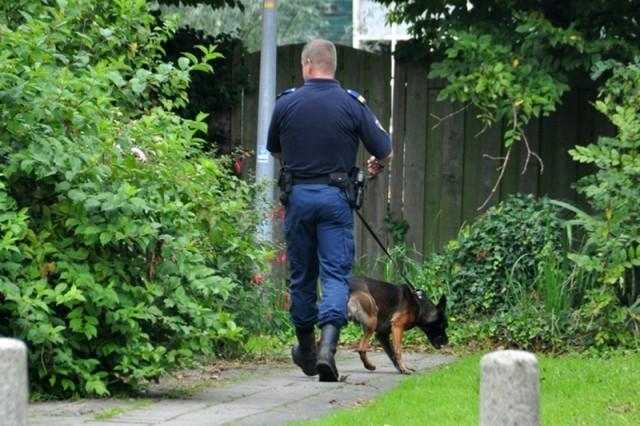 Politie - hond (2)