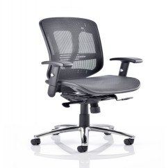 Executive Mesh Office Chair Eames Elephant Dynamic Mirage 2 121 Furniture Customer Ratings Reviews