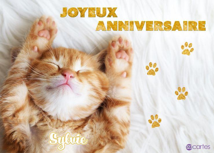 12 Cartes Anniversaire Avec Le Prénom Sylvie 123cartes