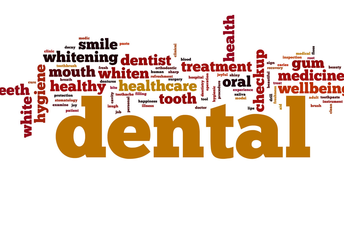 teeth names diagram car stereo wiring diagrams free a guide to understanding dental lingo - from 123dentist
