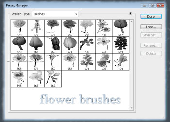 Photoshop Floral Brushes Free Download Cs6