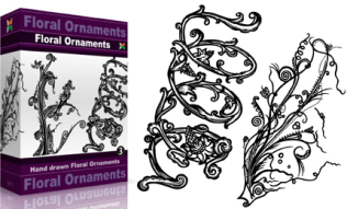 Floral Ornaments Set.1 | Vol : 3