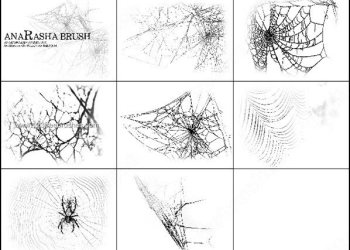 Free Spiders Web Brushes for Photoshop 7