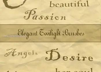 Elegant Twilight