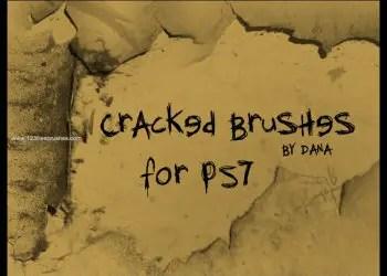 Crack Pack 10