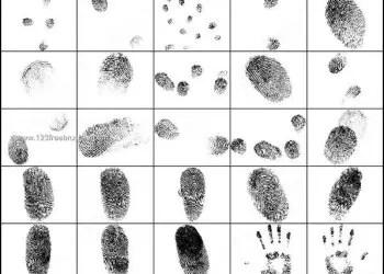 Free Photoshop brushes Fingerprints