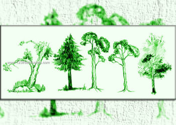Doodles Tree Brushes Download