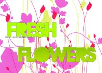 Flower Ornaments Brushes Photoshop
