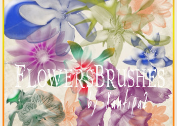 Floral Elements Brushes