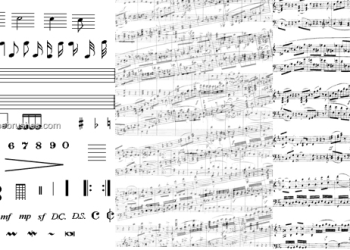 Musical Notes 11