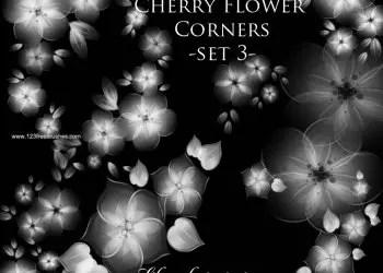 Cherry Flower Corners