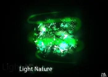 light nature