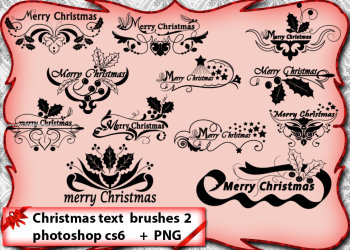 Floral Christmas Text