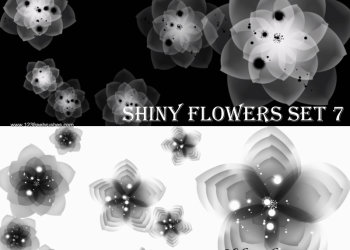 Shiny Flowers