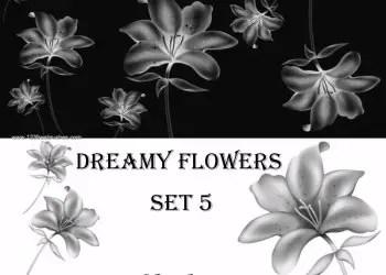 Dreamy Flowers