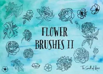 Hand Drawn Rose Flowers