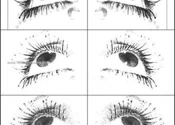 Free Eyes Brush