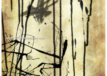 Ink Splatter Paint 112