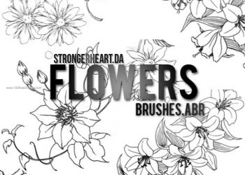 Brushes Photoshop Cs5 Download