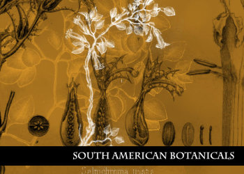 South American Botanicals