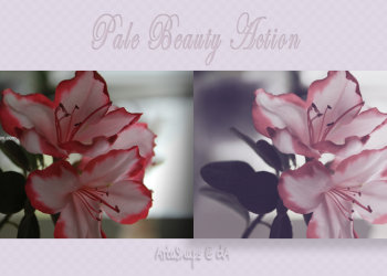Pale Beauty Ps Effect Photoshop Action