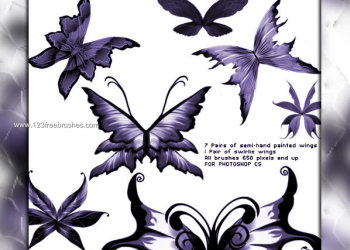 Fantasy Wings Photoshop Brushes Free Download