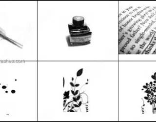 Dear Diary Brushes