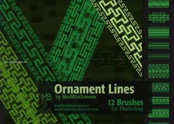 Ornament Lines Border